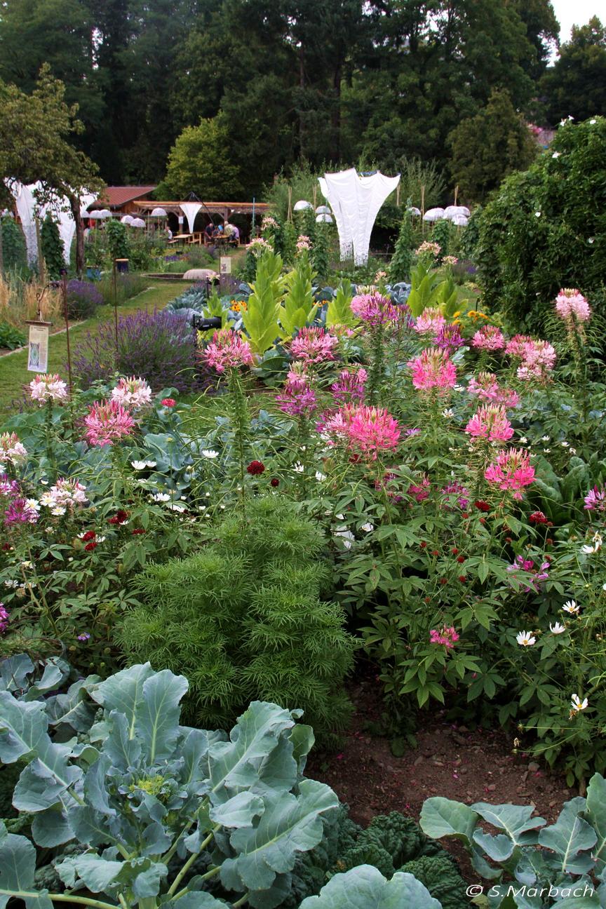 Les jardins imaginaires de peter pan les jardins de for Jardin wesserling