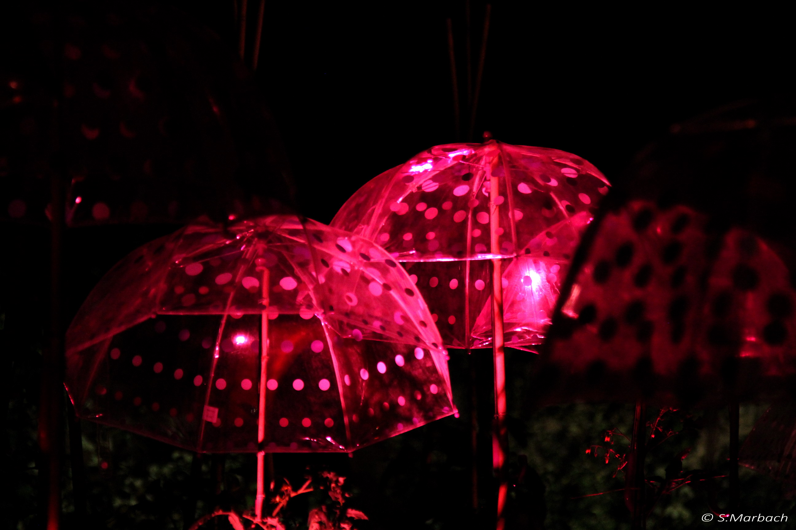 Parapluies nocturnes 1.jpg
