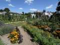 Jardin potager.jpg